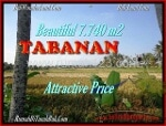 Foto Land for sale in Tanah Lot Tabanan IDR 1000-. 000