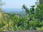 Foto Lovina, Selat land for sale with great ocean view
