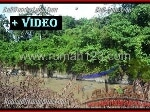 Foto Land for sale in Tanah Lot Tabanan IDR 4250-. 000