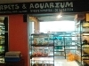 Foto Pet shop reptil, mamalia dan burung (over kontrak)