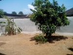 Foto House for sale in Nusa Dua Badung IDR 2500000---
