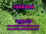Foto Land for sale in Tanah Lot Tabanan IDR 270000.000