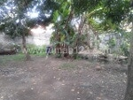 Foto House for sale in Sindang Indramayu IDR 900000-