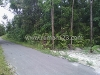Foto House for sale in Bangka IDR 1400000-