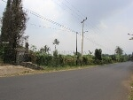 Foto Land for sale in Puncak Bogor IDR 4500-. 000