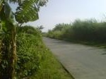 Foto Tanah Pertanian 1.2 Ha for Good Invest