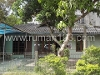 Foto House for sale in Wates Kulon Progo IDR 500000-