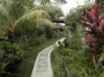 Foto Bungalow complex in tropical garden with...