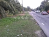 Picture 3.578 acres Agricultural Land, Pantai Remis