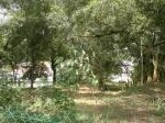 Picture Residential Land For Sale - Seksyen 16 Petaling...