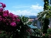 Picture Double Storey Bungalow Mount Kinabalu View At...
