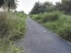 Picture 8 Acres Land Tanjung Mas Sg Pelek Sepang