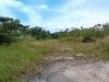 Picture Simpang Taiping Commercial Land