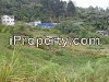 Picture Cameron Highlands, RM 3,200,000