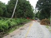Picture Residential Land For Sale - Pontian, Johor