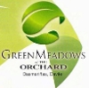 Picture 204 SQ.m lot at greenmeadows at the orchard...