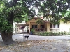 Picture 3-BR house and lot (2800 sqm) Castillejos,...