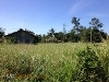 Picture 480 sqm Lot For Sale in Villa Angela...