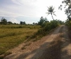 Picture Land and Farm For Sale in Bogo for ₱ 47,500,000...