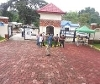 Picture House and Lot For Sale in Novaliches for ₱...