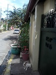 Picture Pre Owned House and Lot Llano Road Caloocan City
