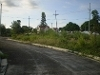 Picture Lot Forin Greenmeadows At The Orchard...