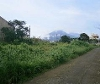 Picture House and Lot For Sale in Lucban for ₱ 500,000...