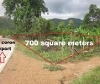 Picture Lot For Sale in Coron for ₱ 3,500,000 with web...