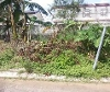 Picture Lot For Sale in Angono for ₱ 720,000 with web...