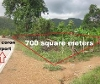 Picture Lot For Sale in Coron for ₱ 3,000,000 with web...