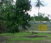 Picture Land and Farm For Sale in San Carlos City for ₱...