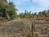 Picture 1,805 sqm Residential Land/Lot for sale in Bacong