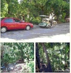 Picture 285 sqm Residential Land/Lot for sale San Pedro