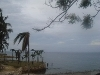 Picture Danao beach house & lot for rent