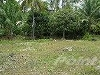 Picture Property For sale - Argao Cebu, Philippines,...