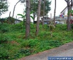 Picture Land and Farm For Sale in La Trinidad for ₱...