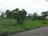 Picture Residential property for sale in Naga City,...