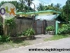 Picture Foreclosed house and lot in Ilaor Sur Oas Albay...
