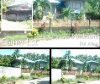 Picture House and Lot For Sale in Polangui for ₱...