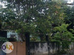 Picture San Pedro, Laguna house for only Php1,900,000 M