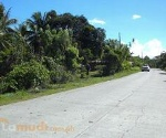 Picture Land and Farm For Sale in Davao City for ₱...