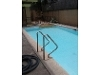 Picture House And Lot With Swimming Pool For Lease-...