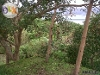 Picture Ternate Cavite Lot with house for Sale with...