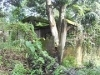 Picture Foreclosed House And Lot For Sale In Pagadian...