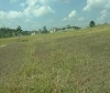 Picture Lot For Sale in San Antonio for ₱ 1,329,800...