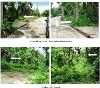 Picture 300 Sqm Residential For Sale Ternate