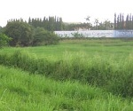 Picture Lot For Sale in Mamplasan for ₱ 55,380,000 with...