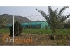 Picture Plot For Sale in Bara Kahu, Islamabad -...