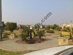 Picture 1 Kanal Plot For Sale In Cheap Price
