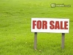 Picture Available Plot in model town A bahawalpur